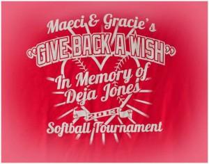 2013 Co-Ed Softball Tournament shirt